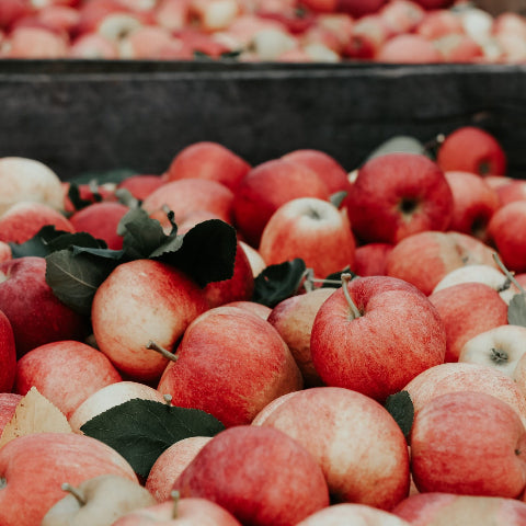 Apples harvested and piled together