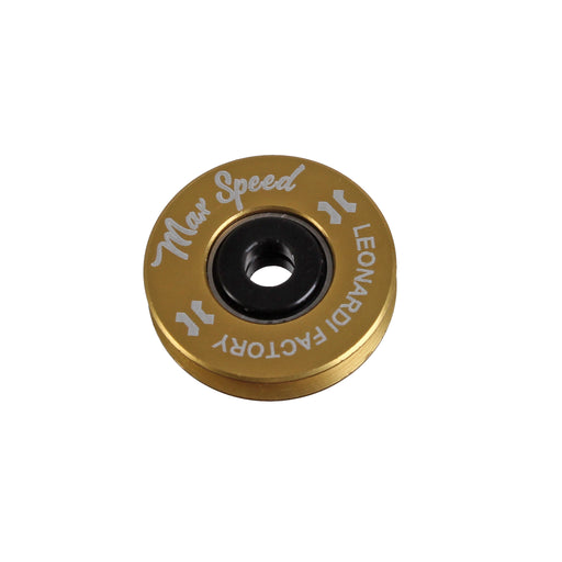 Leonardi Pulley Max Speed, Gold