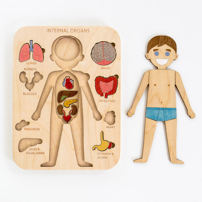 Human Body Puzzle Toy