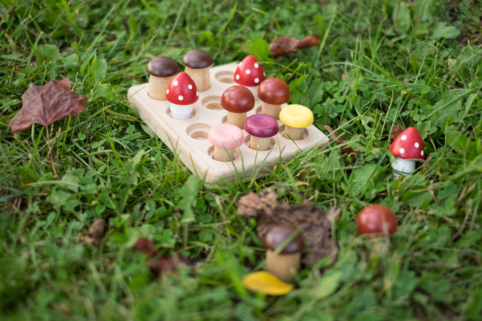 Wood Mushrooms on the field