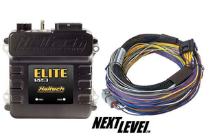 Haltech Elite 550 ECU with basic loom