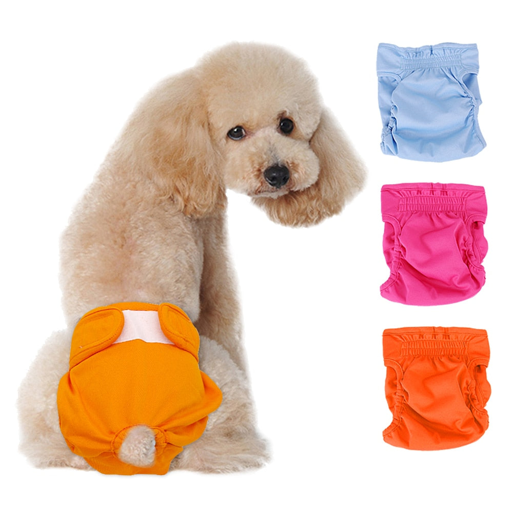 Small Dog And Cat Sanitary Pants