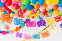 Ideas for Mexican Party celebration