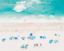 Load image into Gallery viewer, Florida Sunbathers - Christine Mueller Photography