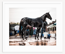 Load image into Gallery viewer, Thoroughbred - Christine Mueller Photography