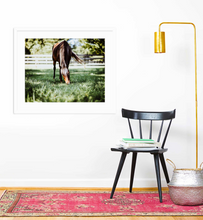 Load image into Gallery viewer, Greener Pastures - Christine Mueller Photography