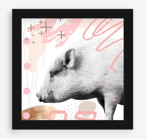 Pig - Animal Graffiti - Christine Mueller Photography