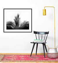 Load image into Gallery viewer, Majestic Palm - Christine Mueller Photography