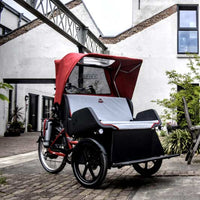 The Chat from Van Raam <br> Torque 60 Nm, 250W