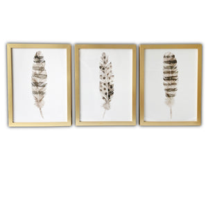 """Feathers"" Framed Print Set Wall Art"