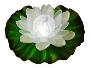 floating white lotus light