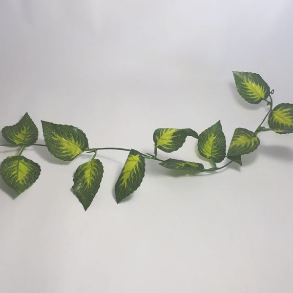 leaf strand - creeper