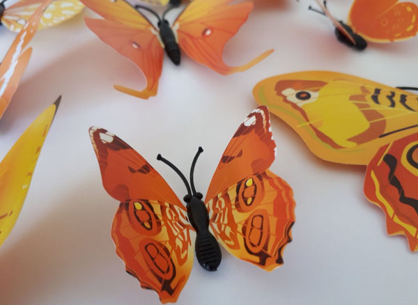 orange butterfly magnet