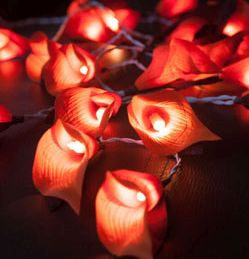 orange lily LED fairy lights - plug in
