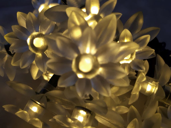 solar lotus fairy lights