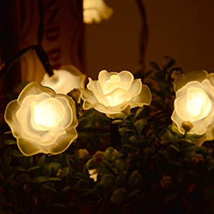solar rose fairy lights