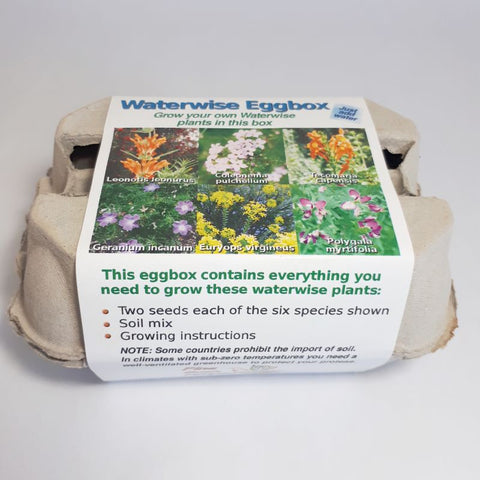 grow your own waterwise fynbos