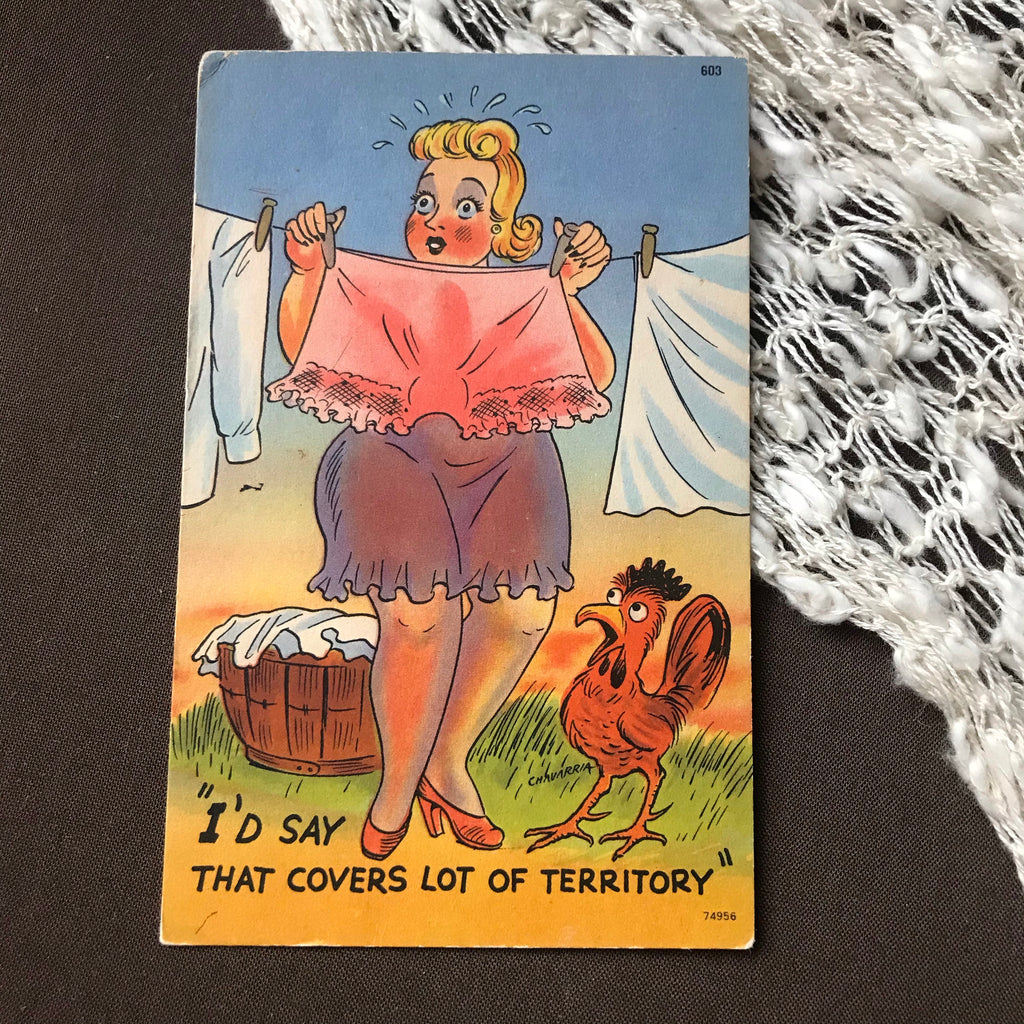 Vintage Novelty Postcard: Lot of Territory
