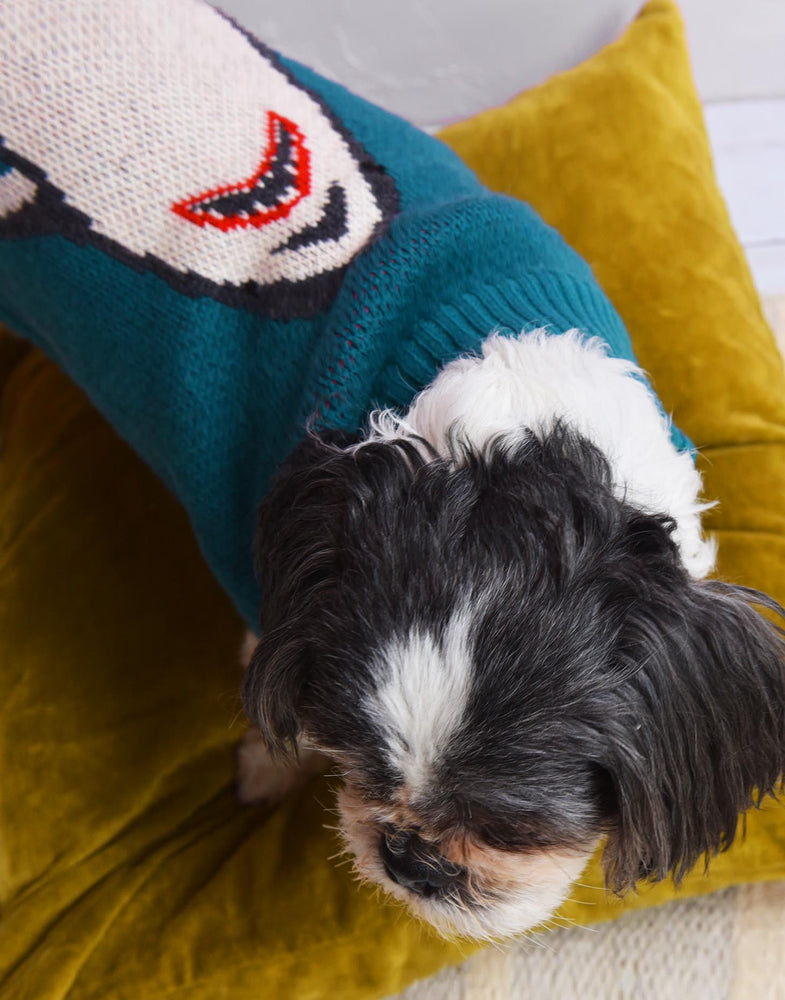 Shark Attack Dog Jumper