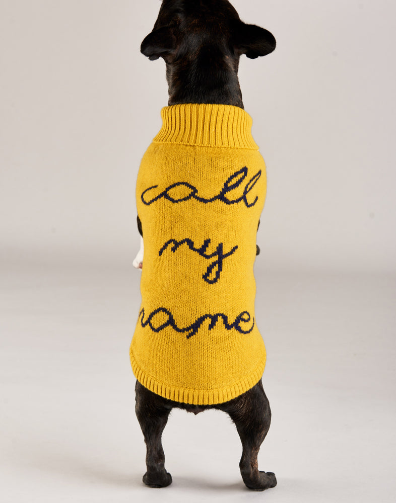 Call My Name Dog Jumper
