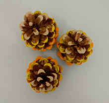 Load image into Gallery viewer, Autumn Ombre Painted Pinecones