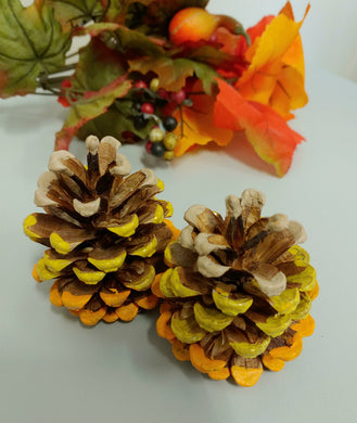 Autumn Ombre Painted Pinecones