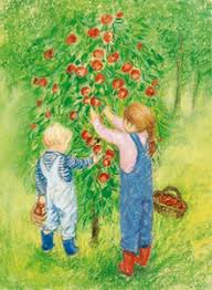 Postcard - Picking apples