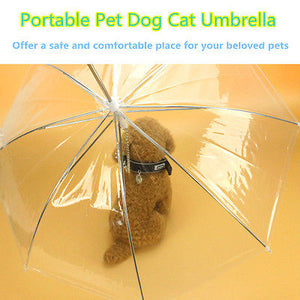 Transparent Pet Umbrella Portable Built-in Leash