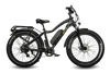 Image of EWheels BAM EW-Supreme Electric Bike - from DT Scooters - from DT Scooters