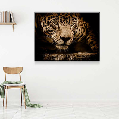 Jaguar Canvas Set