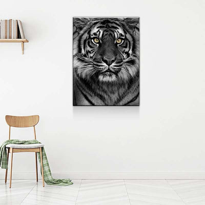 Yellow Eyed Tiger Canvas Set