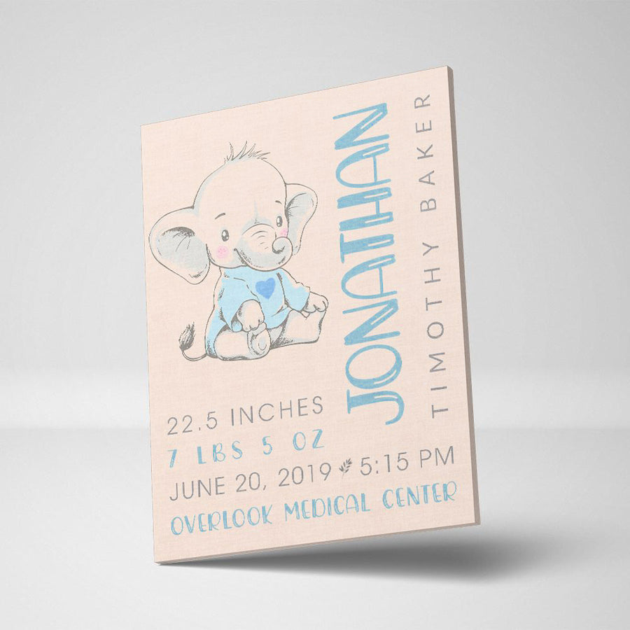 Baby Birth Memories Custom Canvas Set