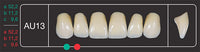 Creation Creopal Full Teeth Mould AU13, 6er