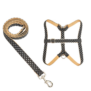 Polkadot Harness and Leash Set