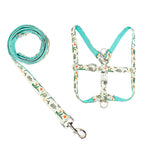 Colorful Dinosaur Dog Harness and Leash Set