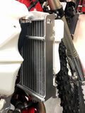 Radiator guards Beta