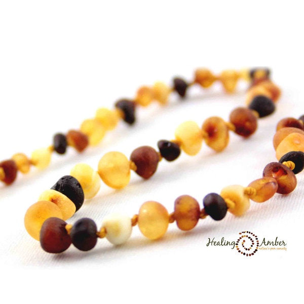 "Healing Amber - 13"" Necklace Raw Multi (Clasp)"