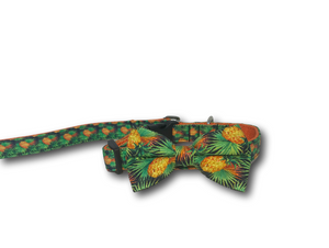 Pineapple design dog bow, collar and leash