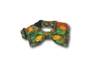 Pineapple design dog bow and collar
