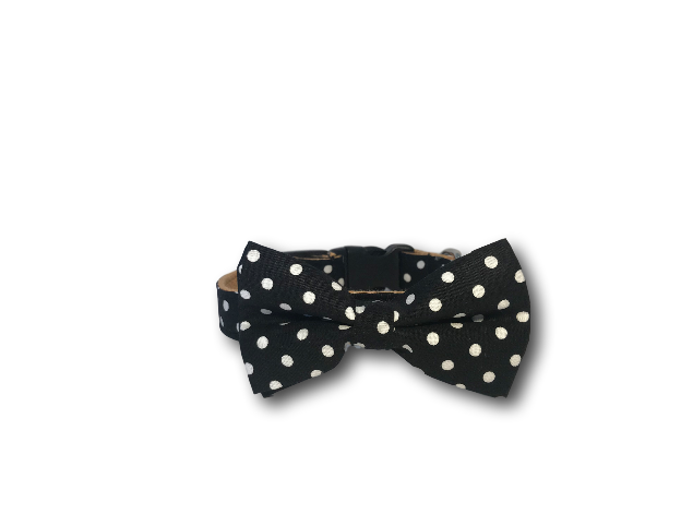 Black and white polka dot dog bow and collar