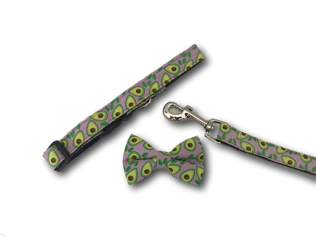 Avocado dog bow, collar and leash
