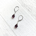 Sterling Silver February Earring
