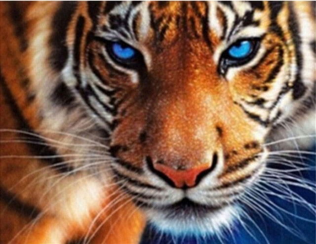 Tiger With Blue Eyes 5D Diamond Painting