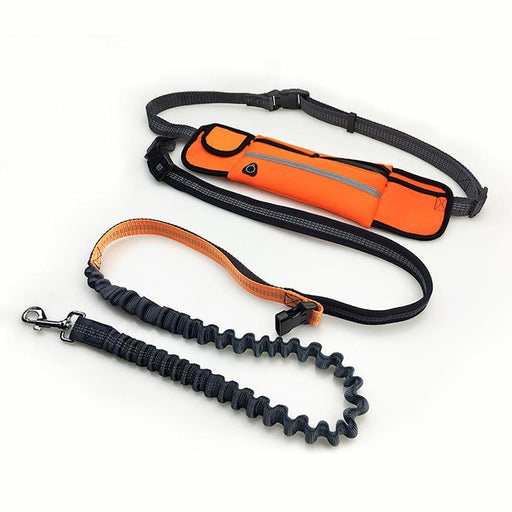 Hands-Free Dog Bungee Leash