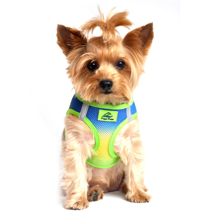 American River Choke Free Dog Harness by Doggie Design - Ombre Collection Cobalt Sport