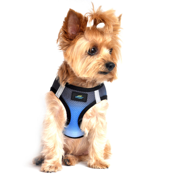 American River Choke Free Dog Harness by Doggie Design - Ombre Collection Midnight Sky