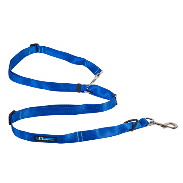 Beyond Control Dog Leash