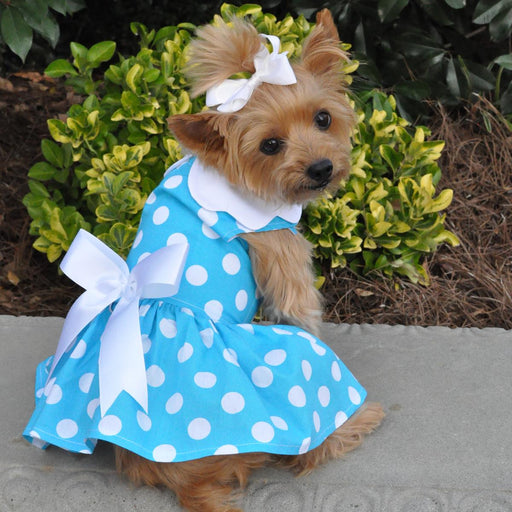 Blue Polka Dot Doggie Dress with Matching Leash