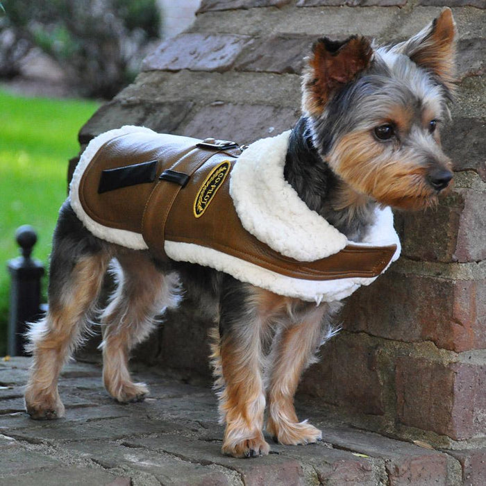 Brown & Black Faux Leather Bomber Dog Coat Harness and Leash by Doggie Design