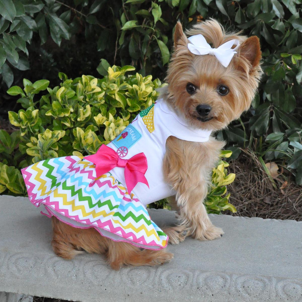 Ice Cream Cart Doggie Dress with Matching Leash